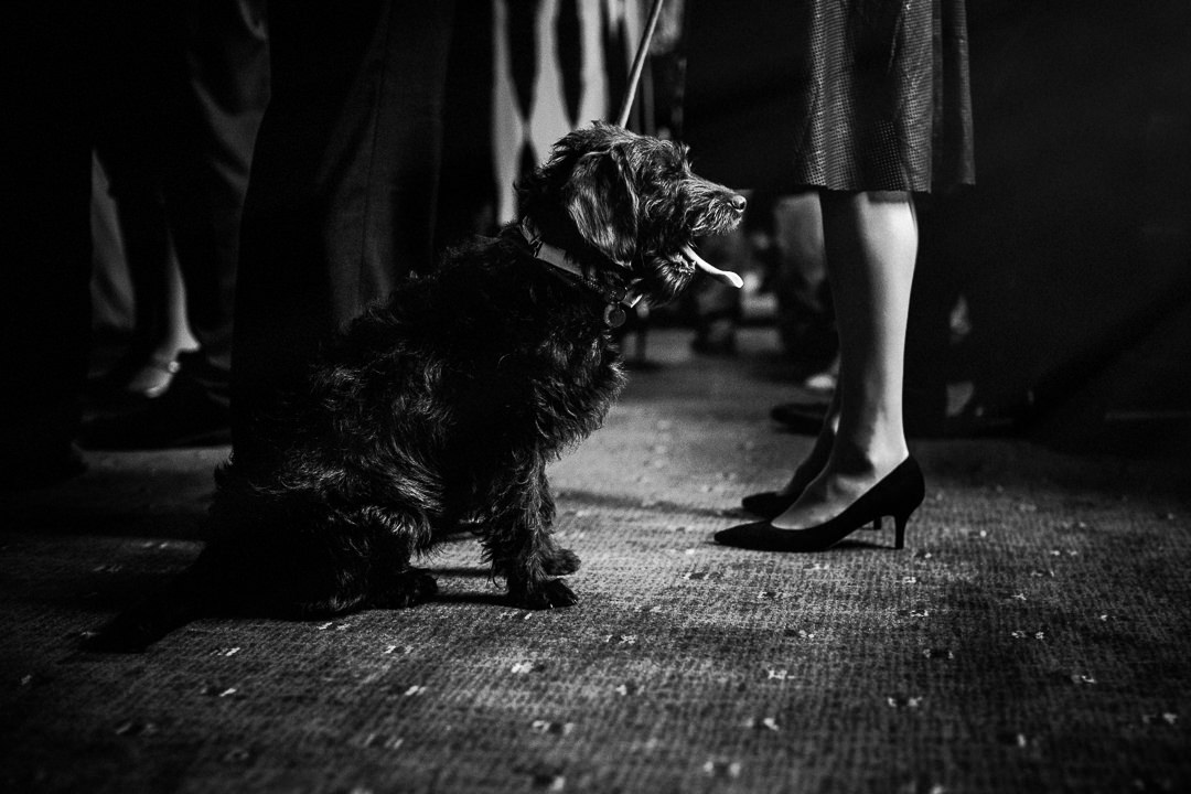london wedding photographer-5-2