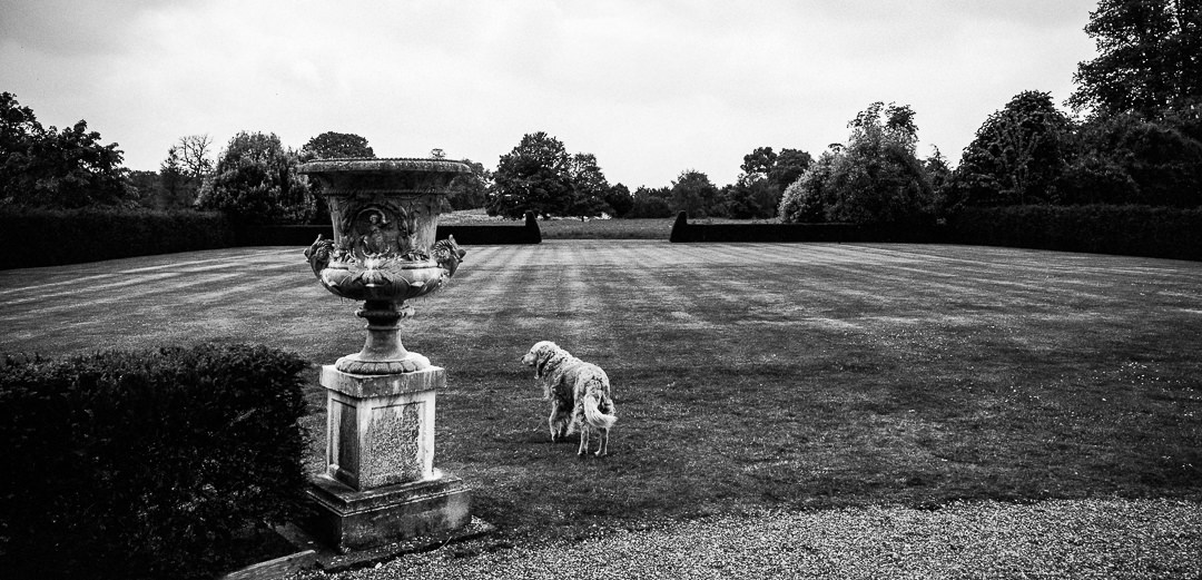 narborough hall gardens wedding photographer-1-3