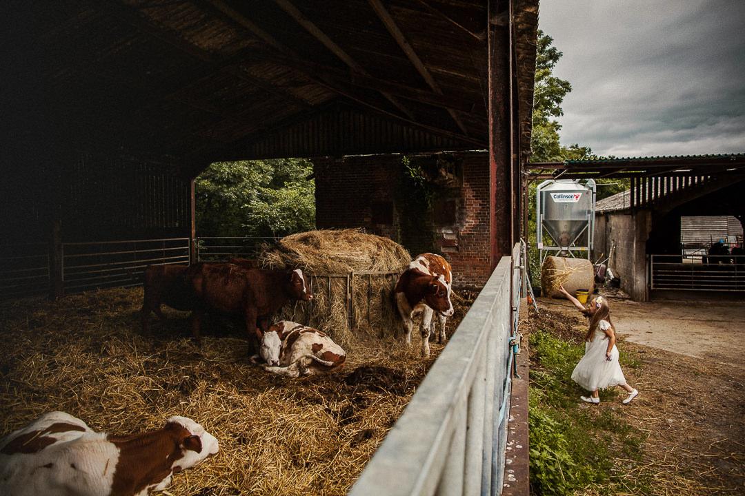 Farm wedding photography-28