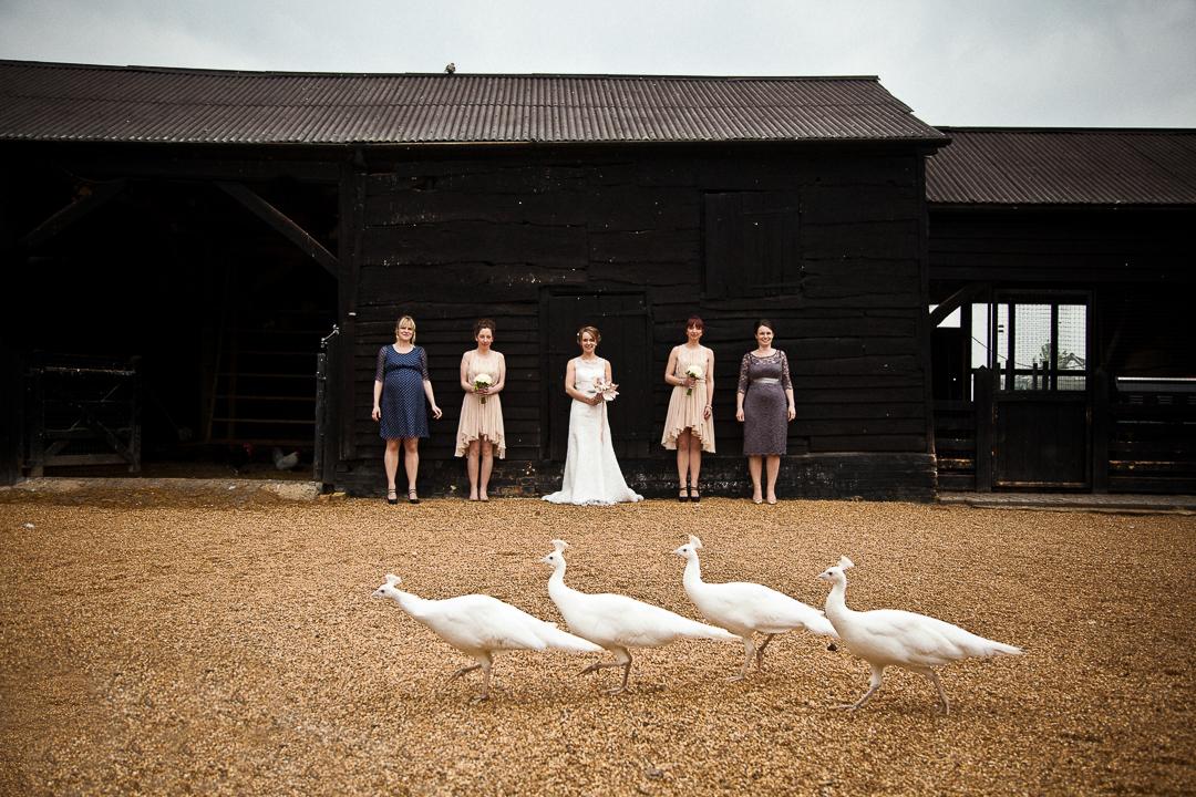 south farm wedding photographer-16