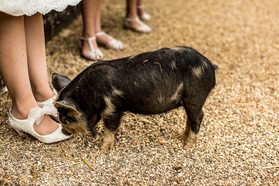 south farm wedding photographer-7