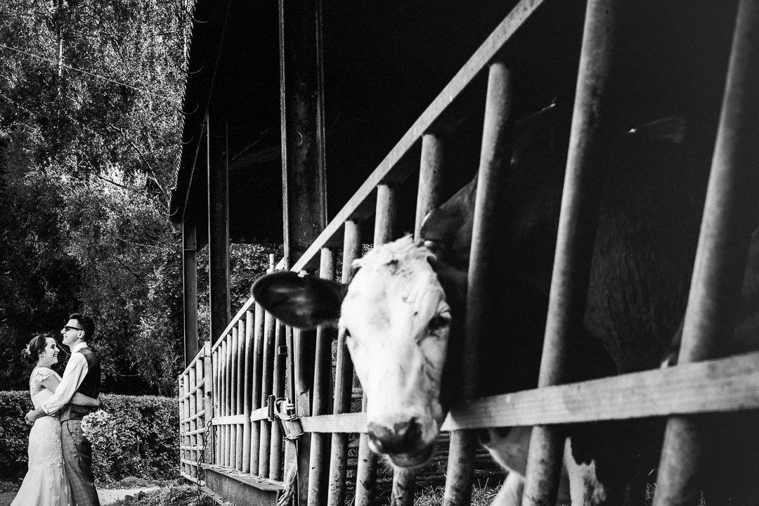 Farm wedding photography-40