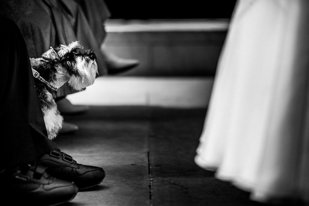 alternative-london-wedding-photographer-2-8