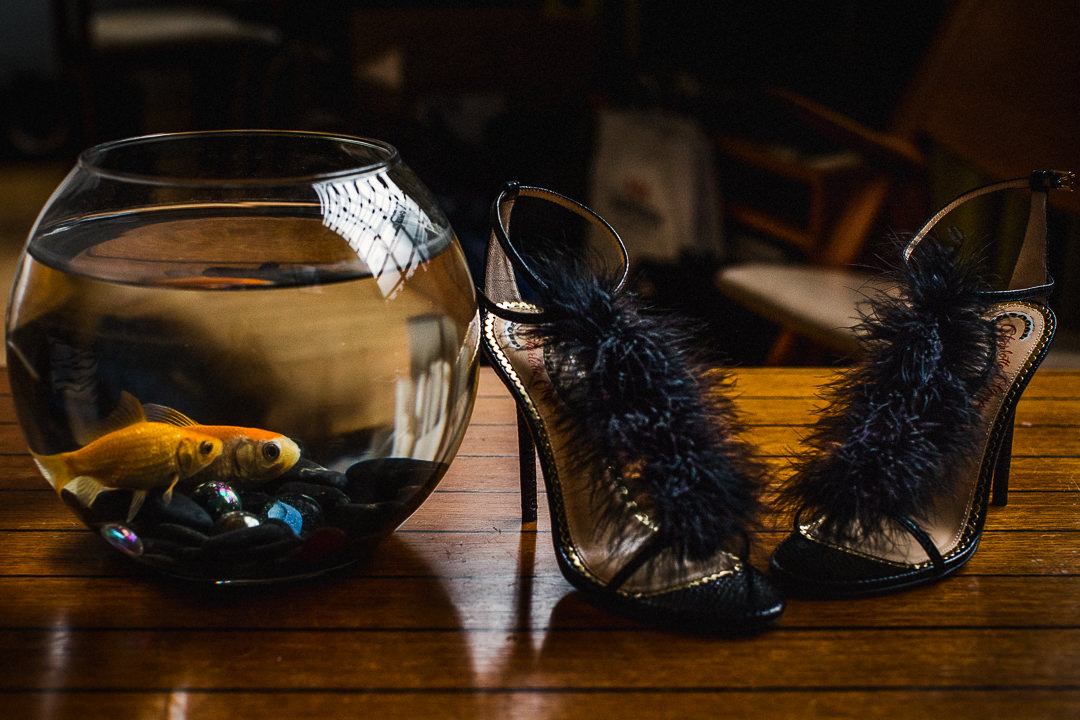 bridal shoes watched by goldfish